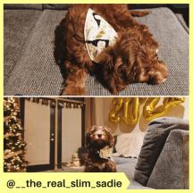 __the_real_slim_sadie